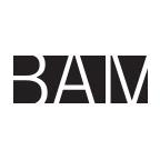 bam_brooklyn
